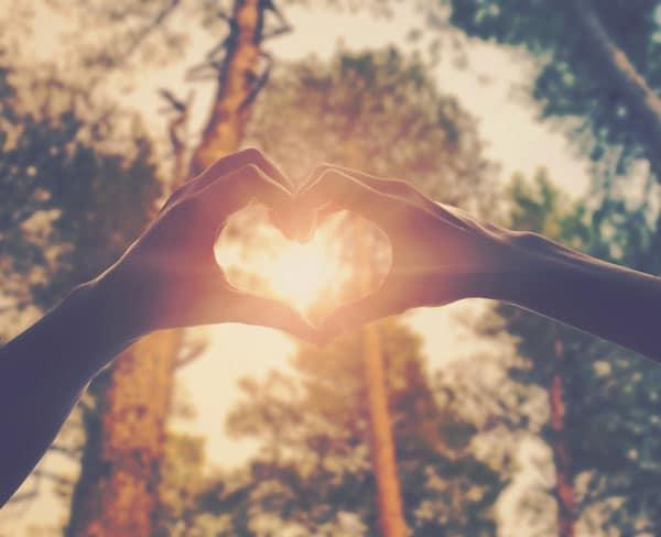 """Liebe-Resilienz width=300 height=200></a></p><p class=wp-caption-text>Liebe in der Luft – Love is in the air</p></div><h2><span id=Wie_drueckt_sich_Liebe_aus>Wie drückt sich Liebe aus?</span></h2><p>Sie zeigt sich durch verschiedenste Ausdrücke. Im Gesicht beispielsweise zeigt sich Hingezogenheit als eine Mischform aus den Emotionen Freude und Interesse. Diese Ausdrücke richtig erkennen zu können, nennt sich übrigens Mimikresonanz. Auch andere körperliche Anzeichen wie Blicke, Unruhe und Körperhaltung fallen darunter.</p><p>Zudem ist noch ein weiteres, interessantes Phänomen zu beobachten, wenn es um starke emotionale Bindungen geht. Dieses lässt sich beispielsweise bei Liebespaaren beobachten. Die Verhaltensweisen und Gewohnheiten der Partner passen sich aneinander an.</p><p>In der Psychologie wird dieses Phänomen """"Rapport"""" genannt. Ausgelöst wird der Rapport durch die sogenannten Spiegelneuronen, die hauptverantwortlich für unsere Empathie Fähigkeiten sind. So gleichen sich in Beziehungen Sprache, Körperhaltung und weitere Gewohnheiten immer weiter an.</p><h2><span id=Lieben_und_geliebt_werden>Lieben und geliebt werden</span></h2><p>Sie macht uns glücklich wenn wir sie entgegengebracht bekommen, und auch wenn wir sie schenken. Sie gibt uns ein gutes Gefühl. Daher ist es wichtig im Alltag innezuhalten und uns daran zu erinnern, wie wichtig die Liebe ist. Den Liebsten zu zeigen, was man empfindet schafft nicht nur Wohlbefinden, es stärkt Bindungen und damit gleichzeitig die Resilienz.</p></div><div class=et_post_meta_wrapper></div></article></div><div id=sidebar><div id=search-2 class="""