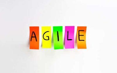 Agilität und organisationale Resilienz