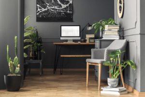 Pflanzen im Büro - Resilienz-Akademie