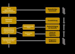 5-Wege-Modell nach Macht