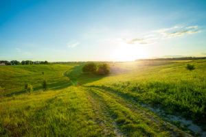 weites Feld mit Sonnenschein