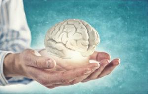 Gehirngerecht