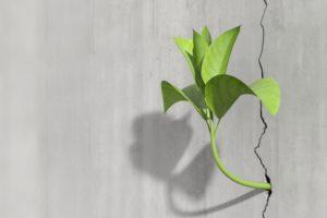 Resilienz ist kraftvoll
