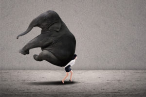Frau trägt Elefanten - Antreiber sei stark
