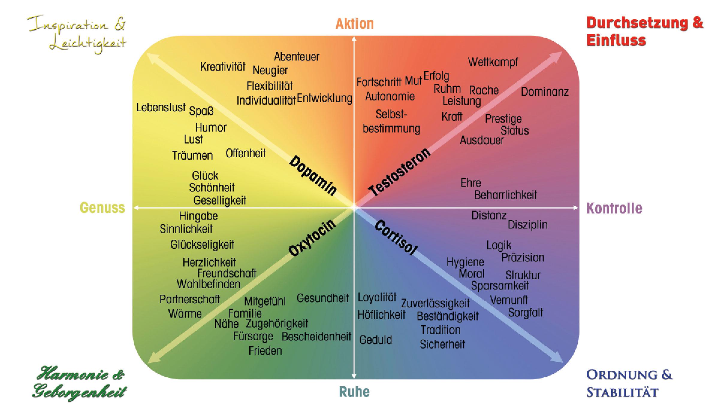 Motivkompass - Resilienz-Akademie