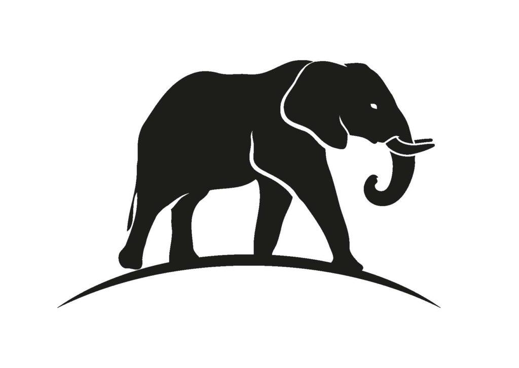 Schwarzer Elefant - Resilienz-Akademie