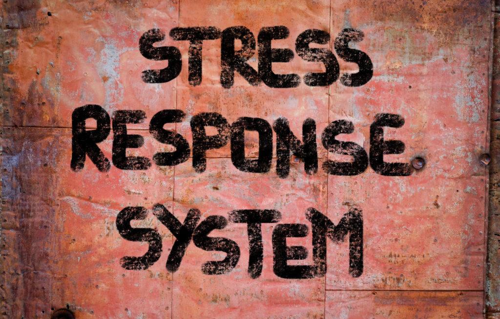 Titel Stress Response system