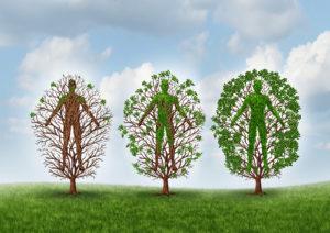 Stufen der Resilienz - Resilienzmodelle